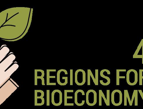 POWER4BIO entwickelt regionale Bioökonomiestrategien durch grenzüberschreitenden Wissensaustausch